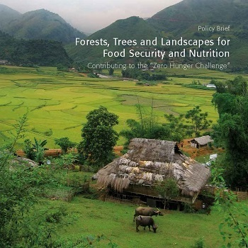 Forests, Trees and Landscapes for Food Security and Nutrition: Contributing to the