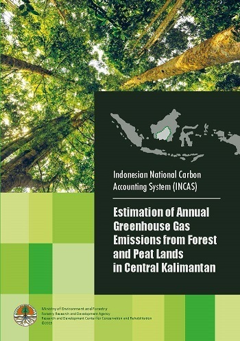 Estimation of Annual Greenhouse Gas Emissions from Forest and Peat Lands in Central Kalimantan