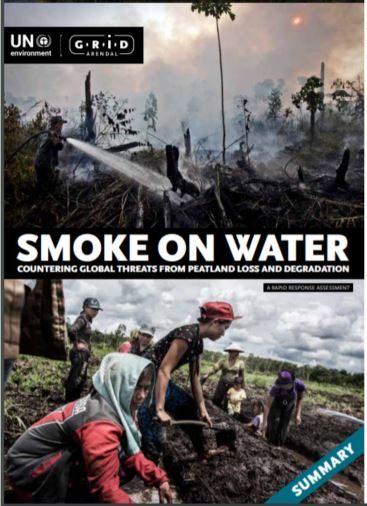 Smoke on water: Countering global threats from peatland loss and degradation
