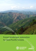 Experiences, lessons and future directions for forest landscape restoration in Indonesia