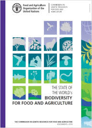 Contributions of biodiversity to the sustainable intensification of food production: thematic study for The State of the World\'s Biodiversity for Food and Agriculture