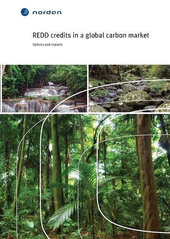 REDD credits in a global carbon market: Options and impacts