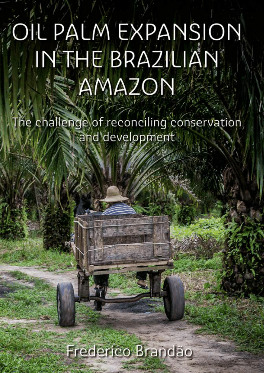 Oil palm expansion in the Brazilian Amazon: The challenge of reconciling conservation and development