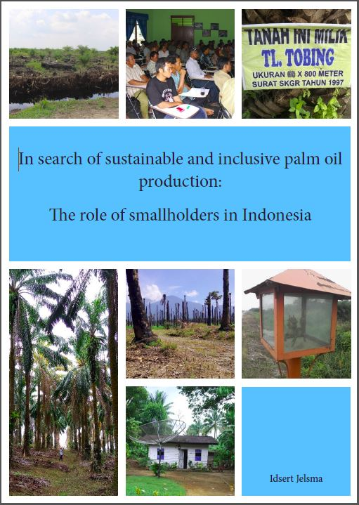 In search of sustainable and inclusive palm oil production: The role of smallholders in Indonesia