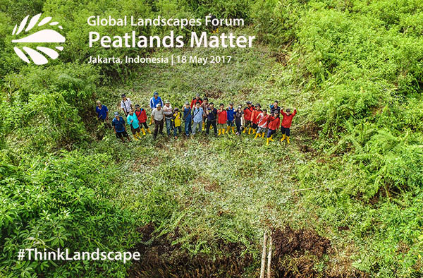 News Update: GLF Peatlands Matter, people, carbon stocks, restoration, and more…