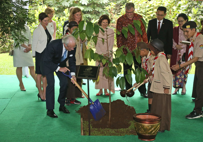 Swedish royal family seeds forestry collaboration with CIFOR and Indonesia