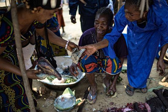 L'avenir de la faune sauvage en Afrique centrale passe par l'implication des communautés locales