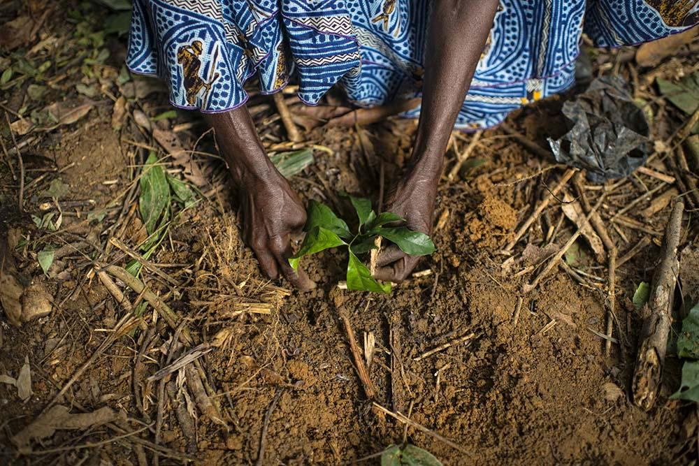 Policy Dialogue on Forest Landscape Restoration and Gender Equality