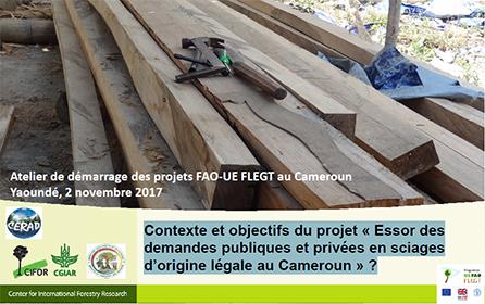 Contexte et objectifs du projet « Essor des demandes publiques et privées en sciages d'origine légale au Cameroun
