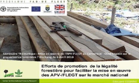 Efforts de promotion de la légalité forestière pour faciliter la mise en œuvre des APV-/FLEGT sur le marché national