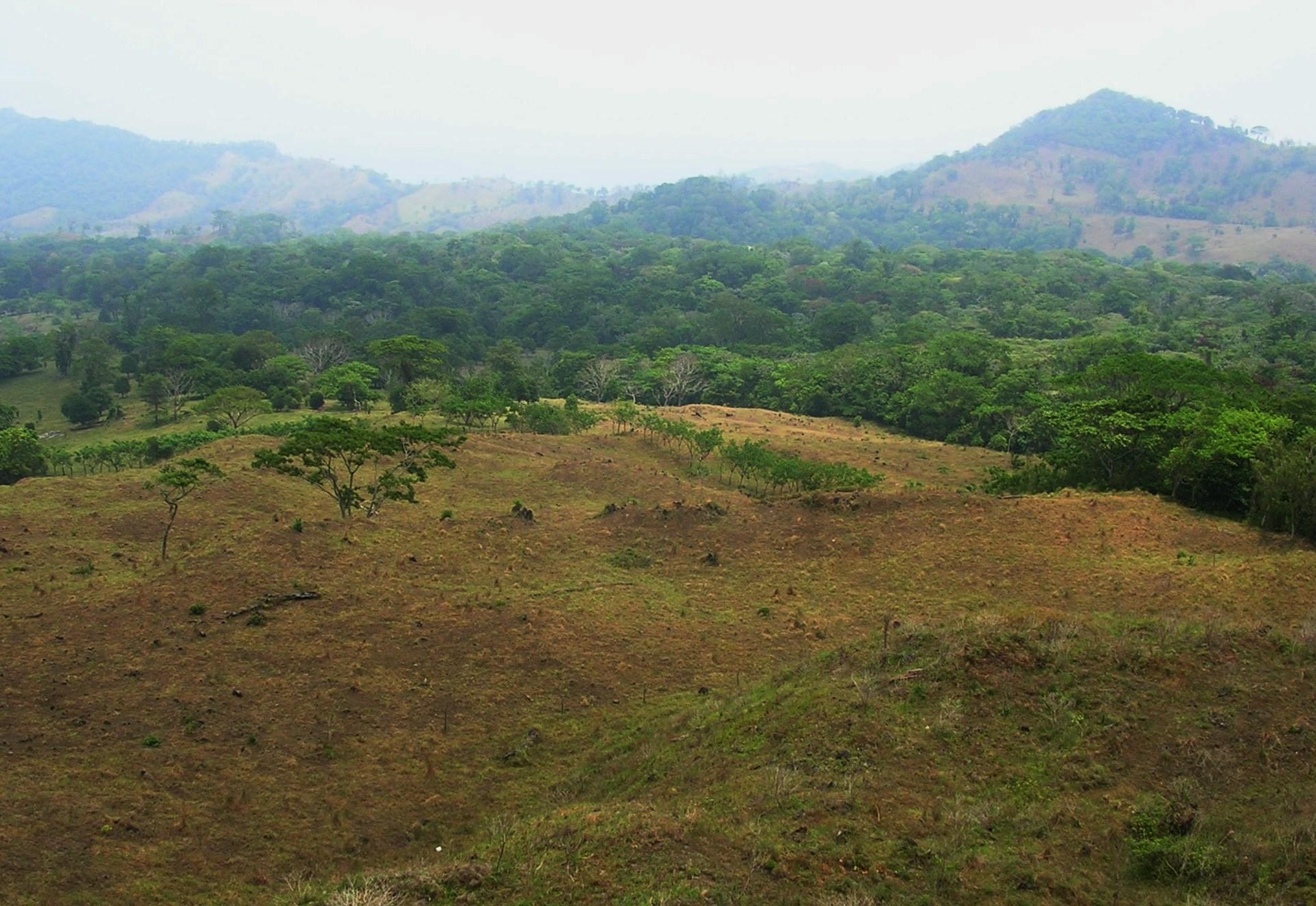 Evento: La restauración de ecosistemas terrestres en México – 19 de junio, Ciudad de México.