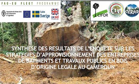Synthese des resultats de l'enquete sur les strategies d'approvisionnement des entreprises de batiments et travaux publics en bois d'origine legale au Cameroun