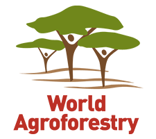 World Agroforestry (ICRAF)