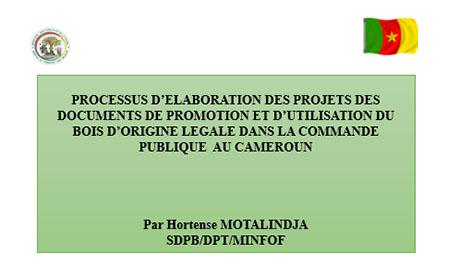 Processus d'elaboration des projets des documents de promotion et d'utilisation du bois d'origine legale dans la commande publique  au Cameroun