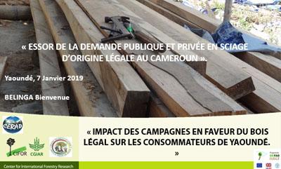 ESSOR de la demande publique et privée en sciage d'origine légale au Cameroun