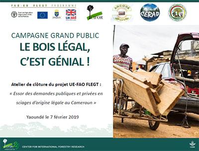 Activités de la campagne grand public « Le bois légal, c'ést génial »